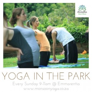 Practise Yoga in the Park every Sunday, just 4km from Avondhu Guest House