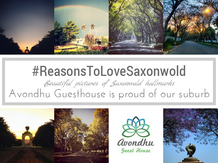 There are lots of #ReasonstoLoveSaxonwold - here are just a few from Avondhu Guest House